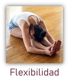 Flexibilidad y fuerza